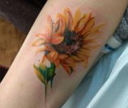 Kristina Green - The Collective Tattoo Company